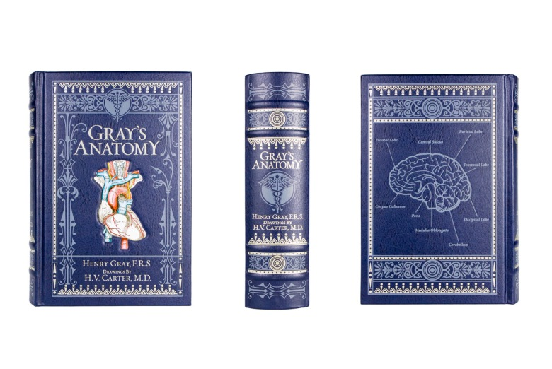 Grey's Anatomy classic book cover, spine, and back photographed by professional product photographer Ali Peterson.